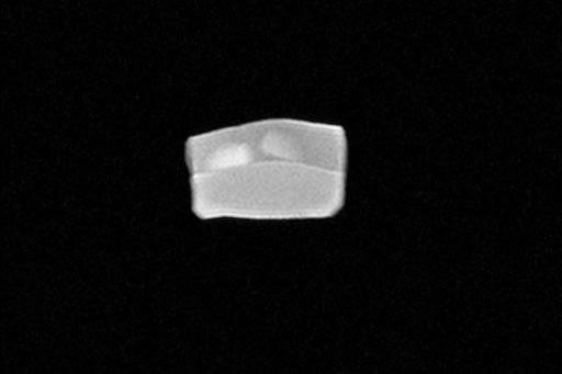 MRIで造影したファントム(がん細胞に見立てた部分も造影可能です)